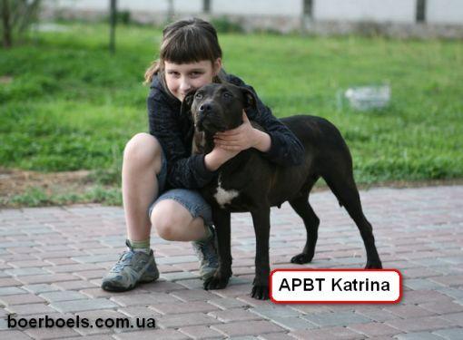 Катрина - всеобщая любимица